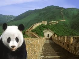 greatwallofchinapanda