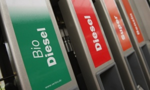Germany Drops Biofuel Plans