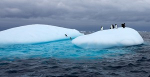 antarcticarecordshottesttemps