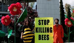 stopkillingbees